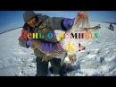 Fishing день огромных щук Якутия, ловим щук Yakutia