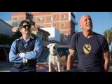 Видео к фильму «Его собачье дело»