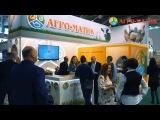 Агро-Матик на международной выставке «MVC: Зерно-Комбикорма-Ветеринария-2017»