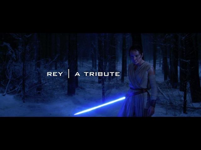Rey | A Tribute