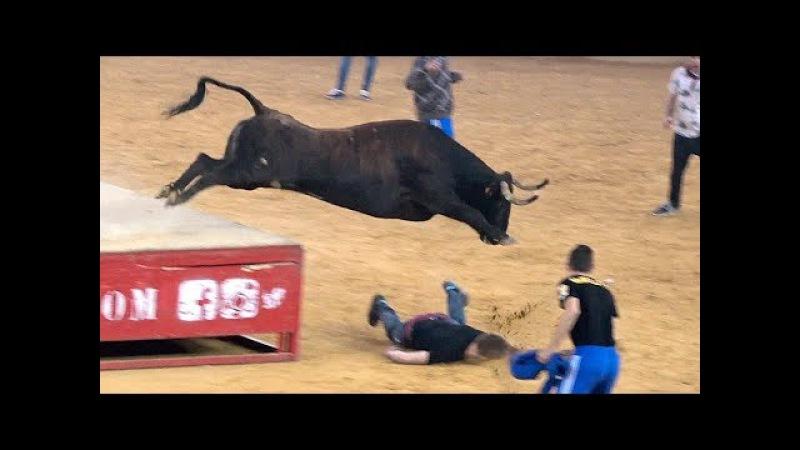 ¡¡Te vas a reír te lo aseguro ⭐KungFu Bullfighting Show⭐ Vaquillas Zaragoza 2016