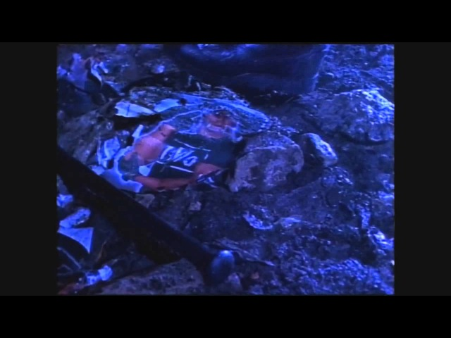 WCW Starrcade 1997 - Promo: Sting vs. Hulk Hogan