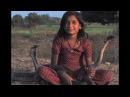 Пригрела змею девочка из Индии дружит с королевскими кобрами и жива