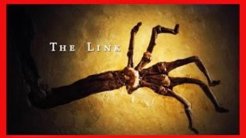 BBC: Недостающее звено / The Link (2009)