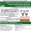 """""""ВЕЛЕС"""" Общество защиты животных г. Вологда"""