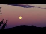 Великолепная обработка и исполнение Лунной сонаты Бетховена! До мурашек