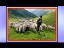 Stefania Stere - Mai ciobane de la oi