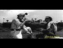 Dil Mera Ek Aas Ka Panchhi - Aas Ka Panchhi 1961 Songs - Rajendra Kumar