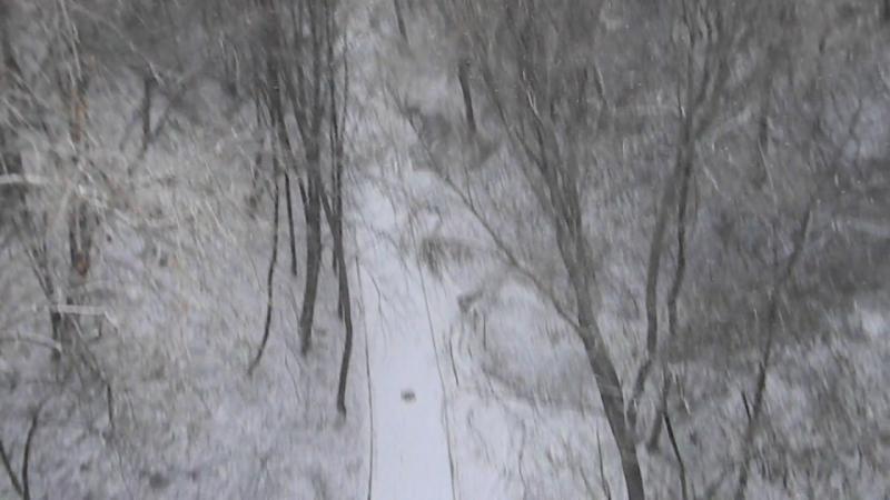 Зимові пейзажі. Сосновка!