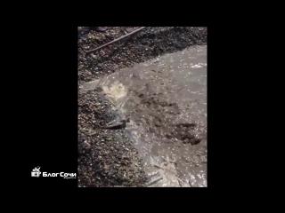 Гейзер из ливневой канализации на пляже Чкаловский в Сочи