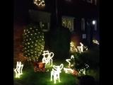 ничего особенного, просто нашу улицу украсили к Рождеству, например
