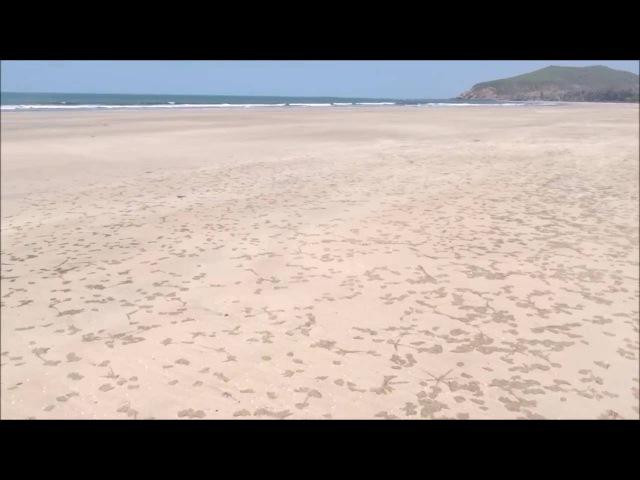 Aravi Beach Maharashtra