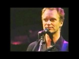 Sting - It's probably me