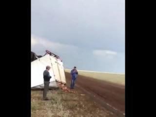 Кишащая на дороге саранча спровоцировала серьезную аварию с газелью