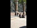 Питер. 27.05.2017. Уличные музыканты. Хэнг.