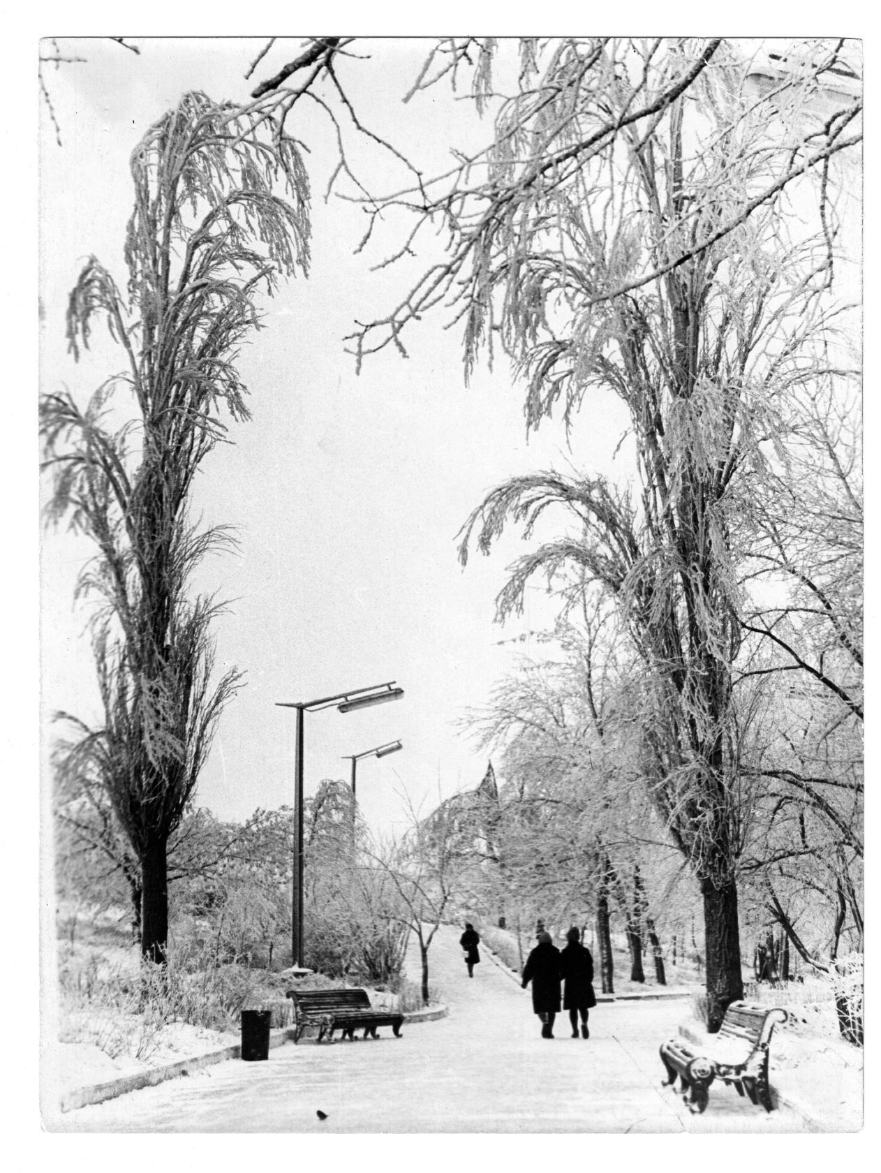 В парке «Дружба». 1977 год