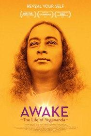 Осознание: жизнь Йогананды / Awake: The Life of Yogananda (2014)