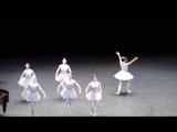 Самый_смешной_балет,_из_тех_что_я_виделPARTY_HARD__gif_amp;_video_204