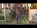 Фермер из США покорил соцсети танцем перед козами