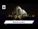 Час Земли 2017: официальное видео