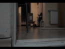 Отстрел пневматического пистолета Макарова kwc