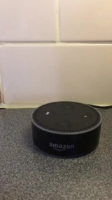 Amazon Echo «Does this unit have a soul?»