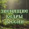 """Книги """"Звенящие кедры России"""", читать онлайн"""
