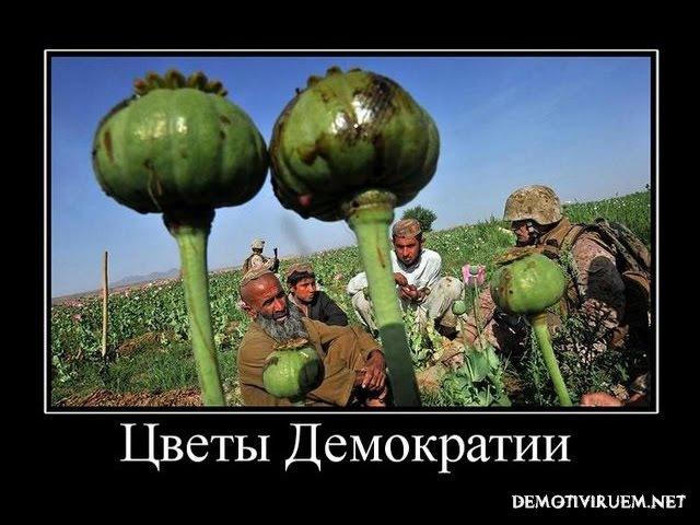 ДЕМОКРАТИЯ ОНА ТАКАЯ! КЛУБ ОЛИГАРХОВ, АНГЛИЙСКАЯ КОРОЛЕВА...
