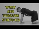 THE COMPLETE STRETCHING VIDEO GUIDE || WRIST AND FOREARM STRETCHES