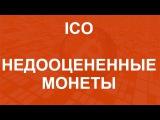 2  Как заработать на ICO 100 000  Результаты