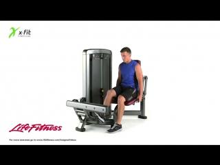 XFIT LifeFitness Сгибание ступней - YouTube