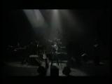 Jacques Dutronc - Lopportuniste (Live).avi