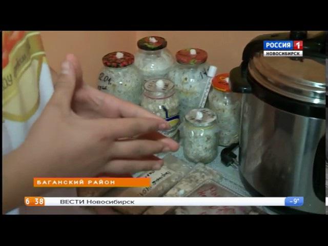 Школьники в Баганском районе научились выращивать грибы