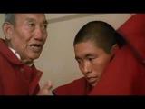 Наука врачевания - О тибетской медицине. Padma