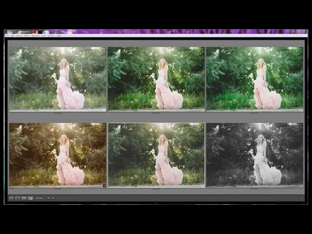 Lightroom Tutorial: Film Matte Edit | Tone Curve and HSL