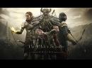 The Elder Scrolls Online выбор расы и класса