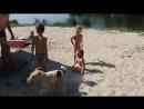 Пляж в Згуровке у друзей 2016