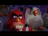 """""""Angry Birds в кино в 3Д"""", мультфильм 17 и 18 декабря на 15.00"""