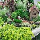Создаём миниатюрный сад