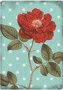 Розы на фонах в горошек