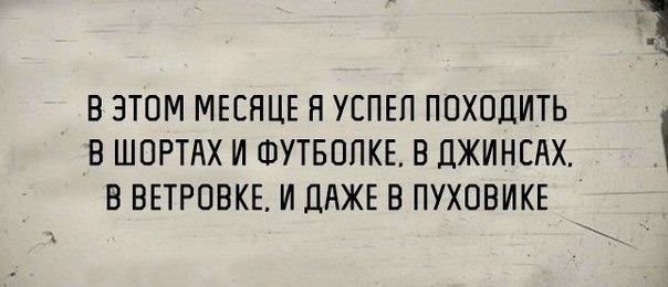 https://pp.vk.me/c638126/v638126657/dd9/Z_N8zz5a9aw.jpg