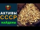Шашурин С.П. Где сейчас активы СССР ( СССР Правительство Краснодарского края)