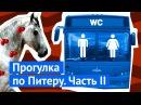 Петербург туалет на Дворцовой украденная ступенька и хорошее жилье