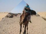Dalida Salma Ya Salama - with pictures from Tunisia