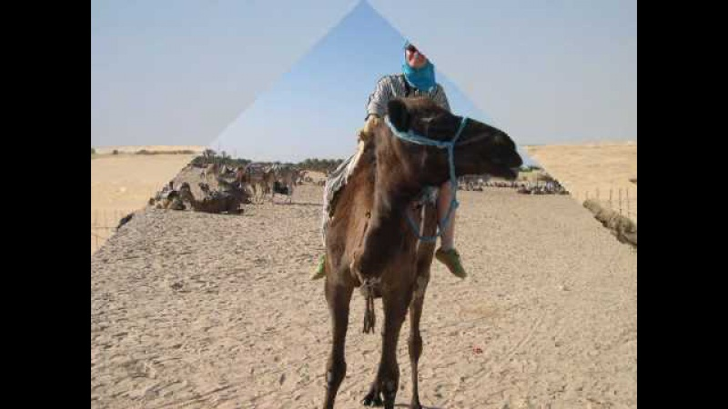 Dalida: Salma Ya Salama - with pictures from Tunisia