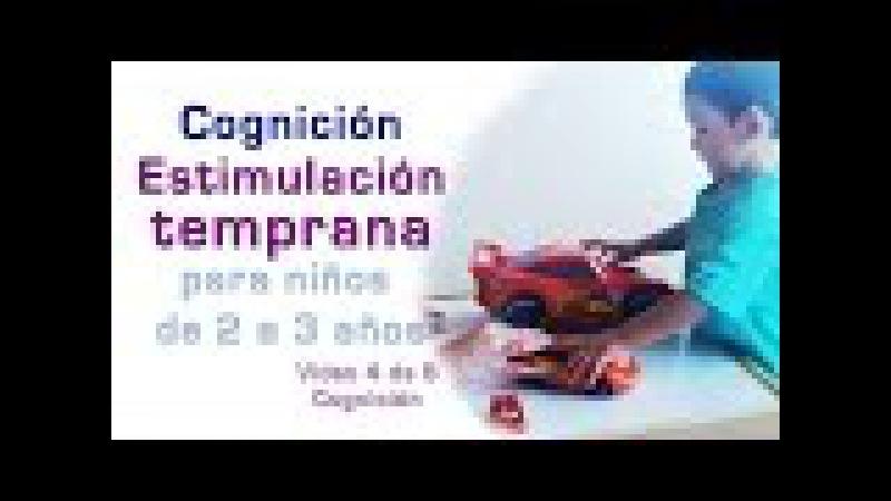COGNICIÓN Estimulación Temprana niños de 2 a 3 años 4 6