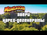 Звери Нарко-Дегенераты Madagascar - The Video Game, ArtGames