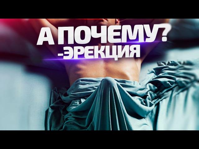 ЭРЕКЦИЯ - а почему? » Freewka.com - Смотреть онлайн в хорощем качестве