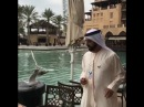 Его Высочество шейх Мухаммед бин Рашид Аль Мактум кормит чаек в Дубае