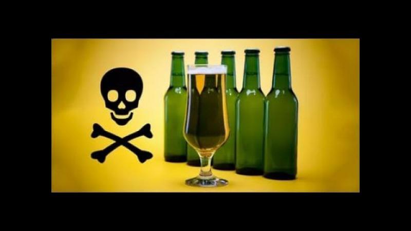 Отличное видео о вреде алкоголя Смертельно выгодно